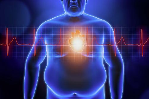Dianol kapsułki na cukrzycę, na prawidłową pracę trzustki, na unormowanie cholesterolu