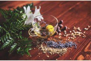naturalne zioła, ziołolecznictwo, leczenie ziołami